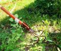Химическая борьба с сорняками