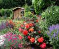 Прекрасный сад на даче
